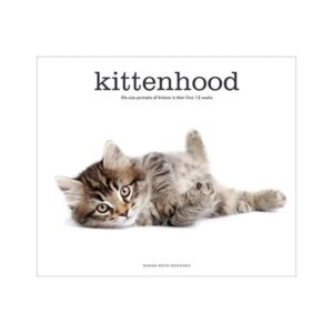 KITTENHOOD: LIFE-SIZE PORTRAITS OF KITTENS IN THEIR FIRST 12 WEEKS