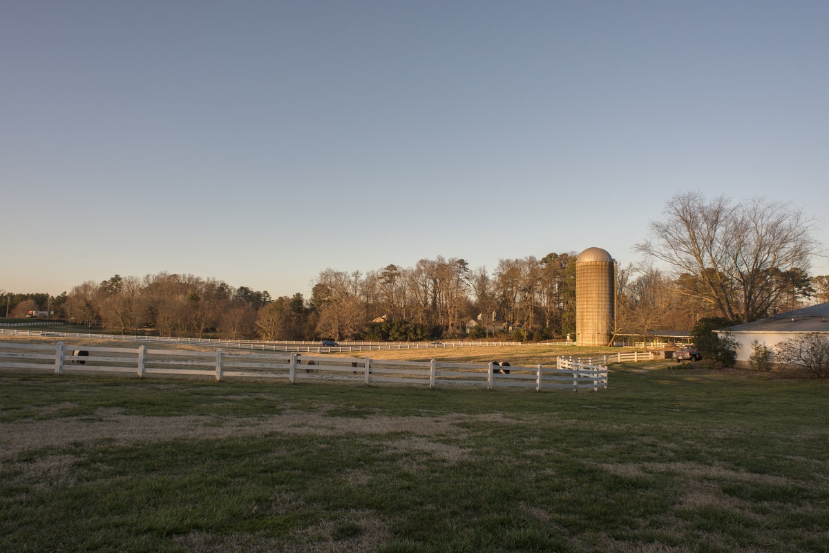 the pasture in front of the Fearrington House