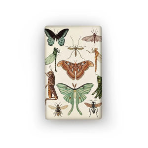 INSECTS FLAT MAGNET