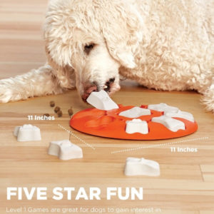 DOG SMART PUZZLE AND GAME